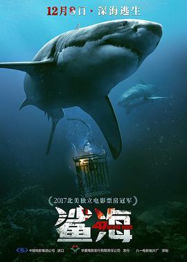 冒险电影《鲨海》解说文案