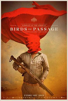哥伦比亚剧情惊悚电影《候鸟》解说文案完整版