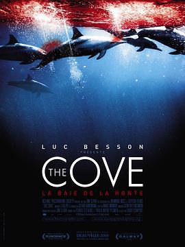 纪录片《海豚湾》解说文案